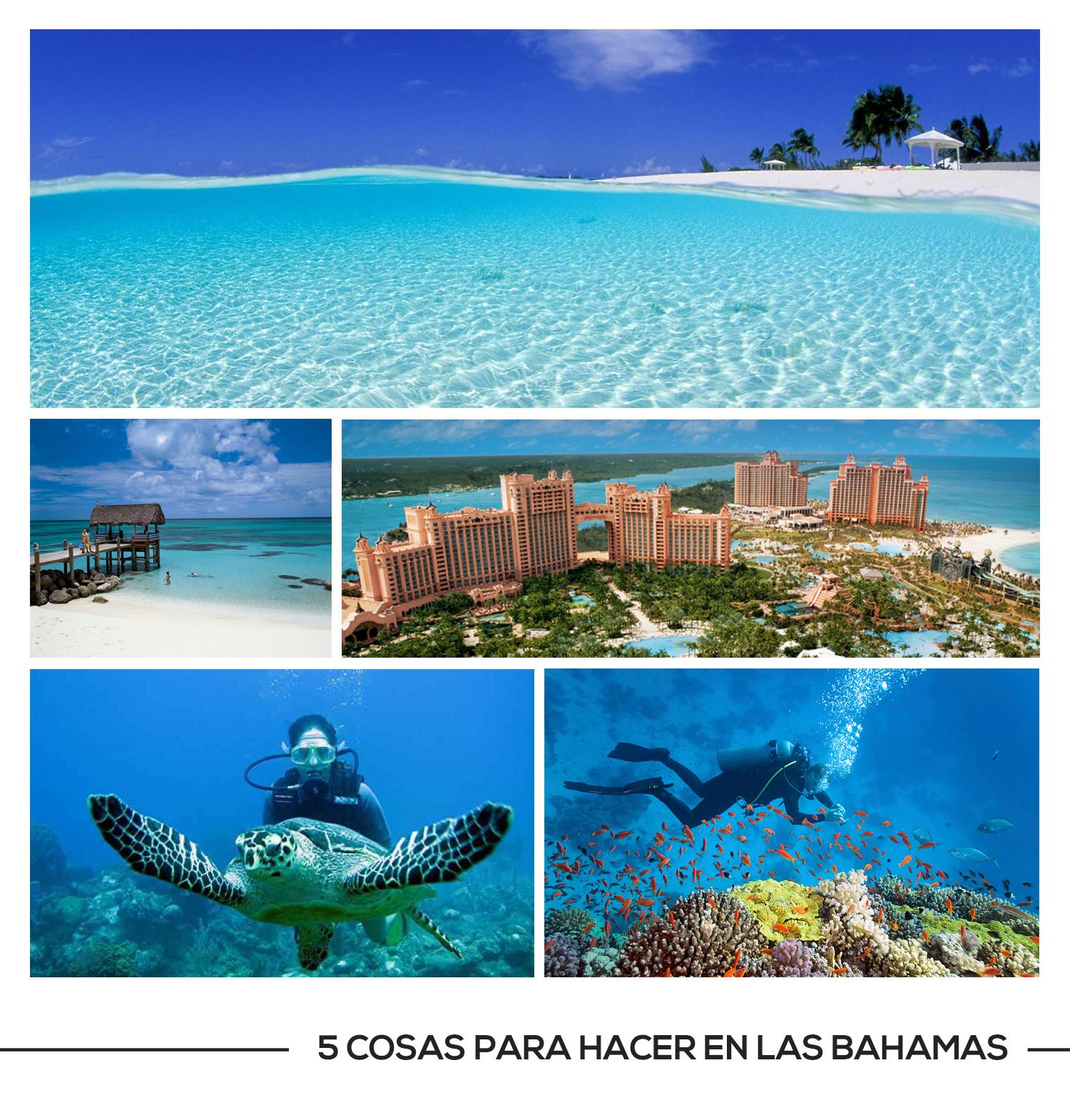 Coovaeco Turismo 5 Cosas Para Hacer En Las Bahamas