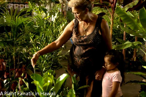 Anthurium Growers Big Island