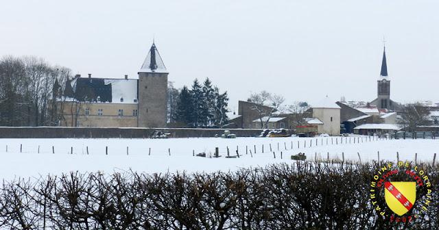 Fléville-les-Nancy - Château et village enneigés