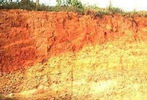 Pengertian Tanah dan Persebaran 20 Macam Jenis Tanah di Indonesia beserta Gambarnya Lengkap