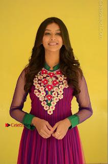 Actress Pooja Jhaveri Latest Stills in Purple Salwar Kameezt at Dwaraka Success Meet  0100.JPG