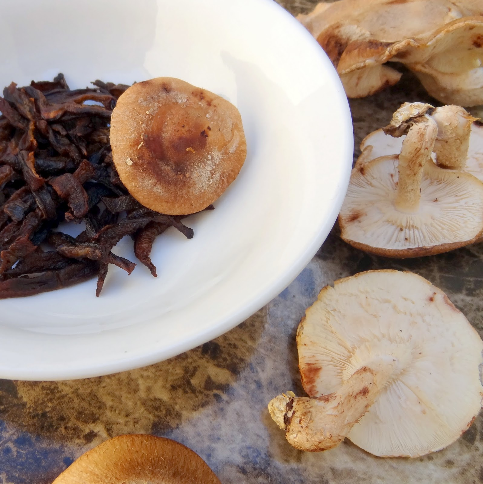 Miss Mochi's Adventures: Roasted Shiitake