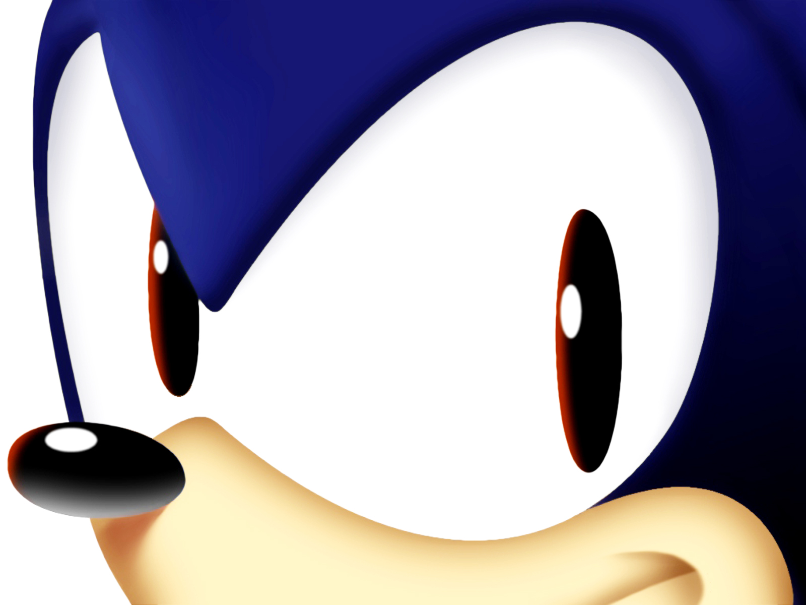 http://2.bp.blogspot.com/-MFy4LuXGHrk/TyrHSATvkOI/AAAAAAAAAfs/ddY3DooRkUY/s1600/Sonic_The_Hedgehog_Huge_Eyes_HD_Wallpaper-Vvallpaper.Net.jpg