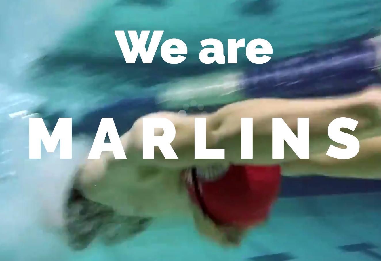 Roosevelt Islander Online Roosevelt Island Marlins Swim Team Coach Reports On Fall Season
