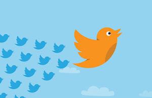 Followers on Twitter platform
