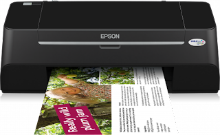 Download Epson Stylus S21 drivers