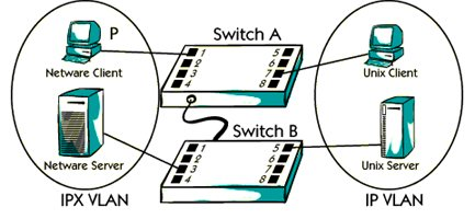 What is protocol based vlan ?
