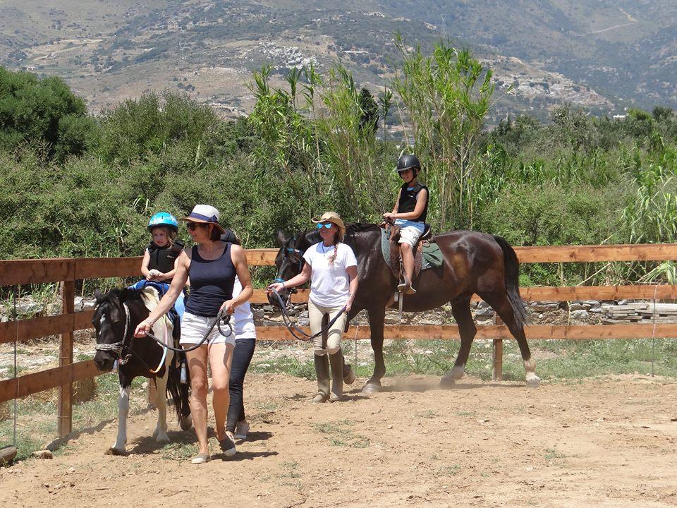 Κέντρο Ιππασίας Amico στην Κάρυστο: Το ταξίδι στον υπέροχο κόσμο του αλόγου ξεκίνησε !!! (ΕΙΚΟΝΕΣ)