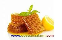 www.obatcaraalami.com