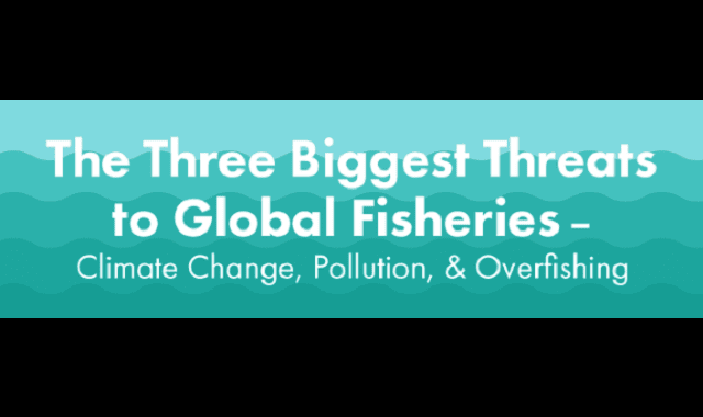 The Three Biggest Threats to Global Fisheries: Climate Change, Pollution and Overfishing