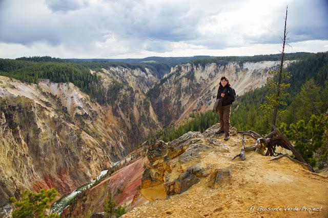 Gran Cañón de Yellowstone desde North Rim, por El Guisante Verde Project