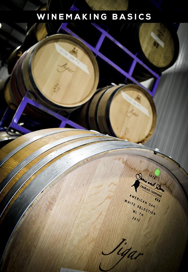 Winemaking Basics via Bubby & Bean
