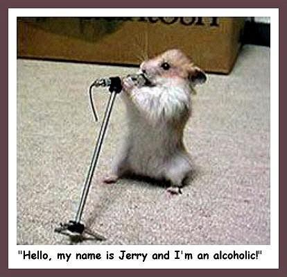 Very Funny Animal Pictures Funny Animals Images Funny Animals Photos On Photobucket Share Them With Your Friends On Myspace Or Upload Your Own Funny