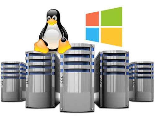 Utilizar servidores virtuales privados de Windows o de Linux - Blog Digital Life