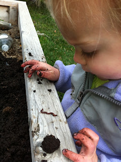 The little kids love the garden worms.
