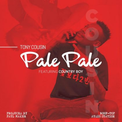 Download Mp3 | Tony Cousin ft Country Boy - Pale Pale