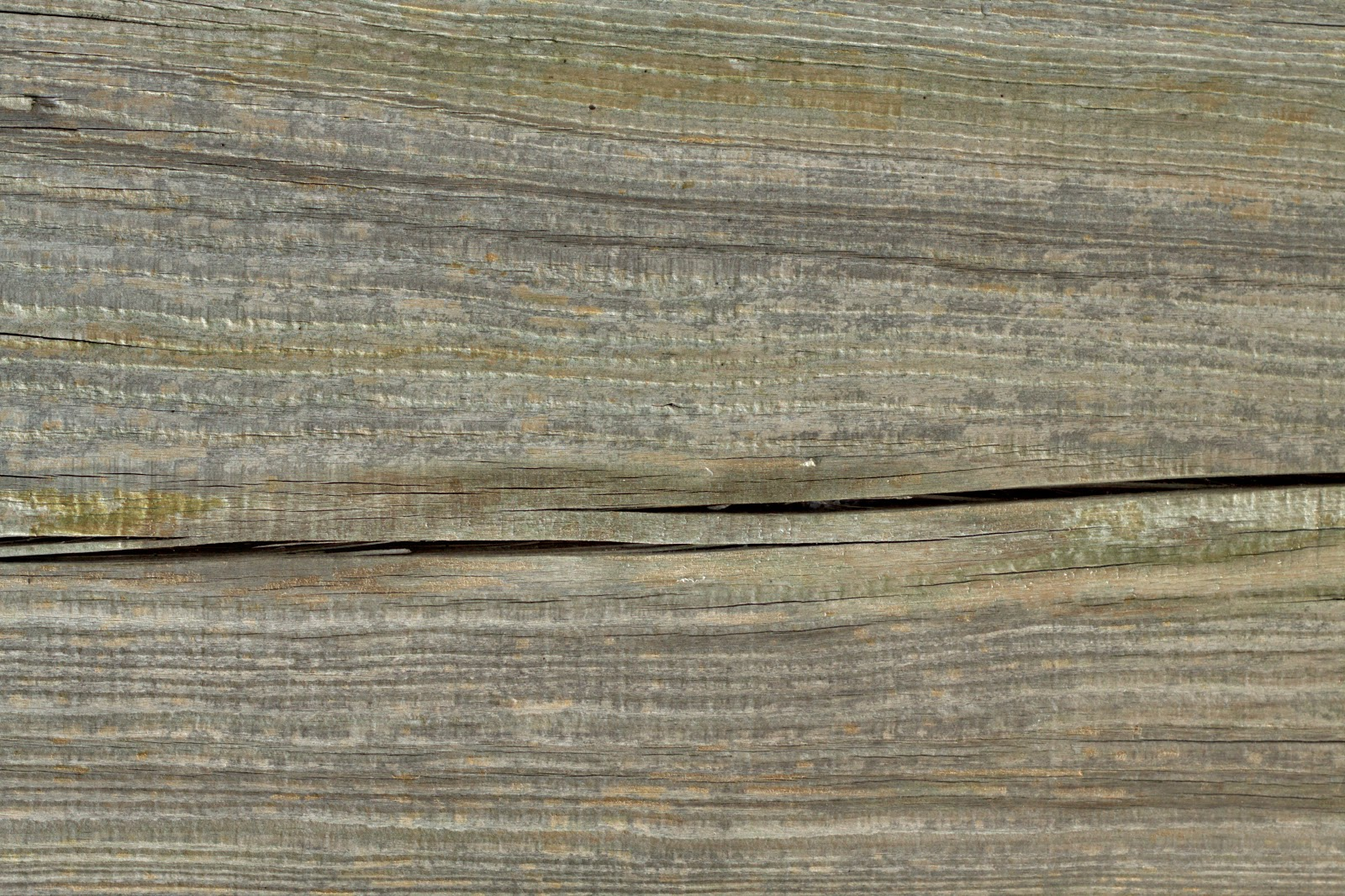 (Wood 26) dry cracked plank tree bark texture 4770x3178