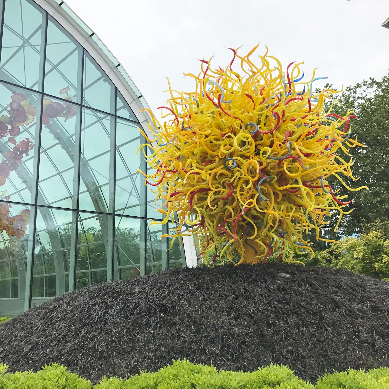 Always Aubrey Seattle Chihuly Garden And Glass