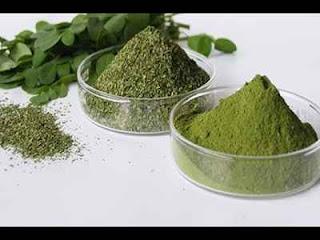cara membuat teh daun kelor, cara memasak daun kelor yang benar