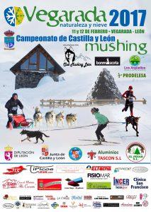 Campeonato de Castilla Y Leon Mushing