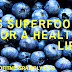 Top 6 Superfoods and 4 Healthy Flours- Health And Fitness Rapidly
