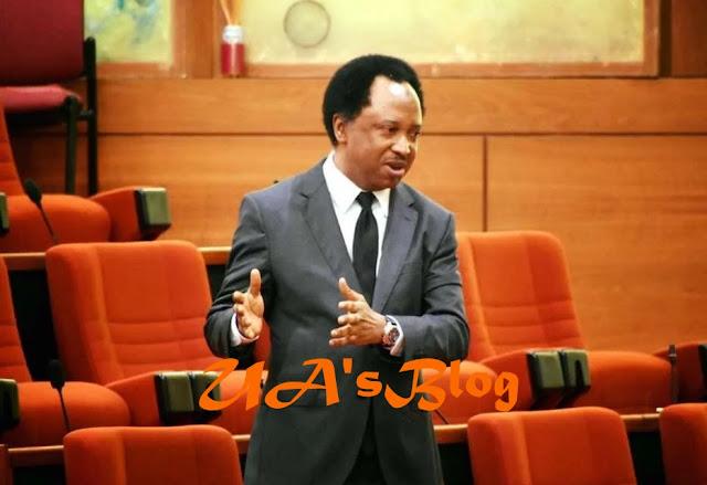 2019: Shehu Sani rates Buhari's govt