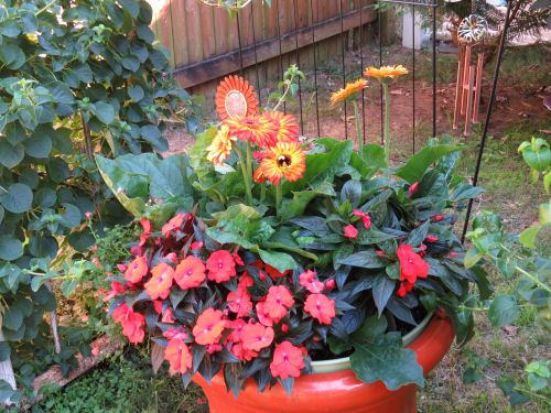 Mason County Garden Tour planter in reds and orange