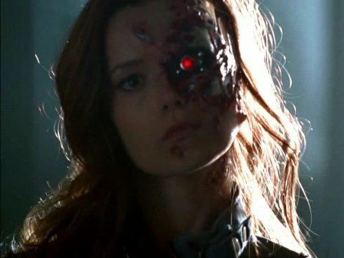 terminator the sarah connor chronicles season 1 online