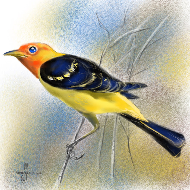 Western tanager bird painting by Artmagenta