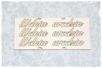 http://manuna.pl/produkt/zaproszenie-3-3-szt