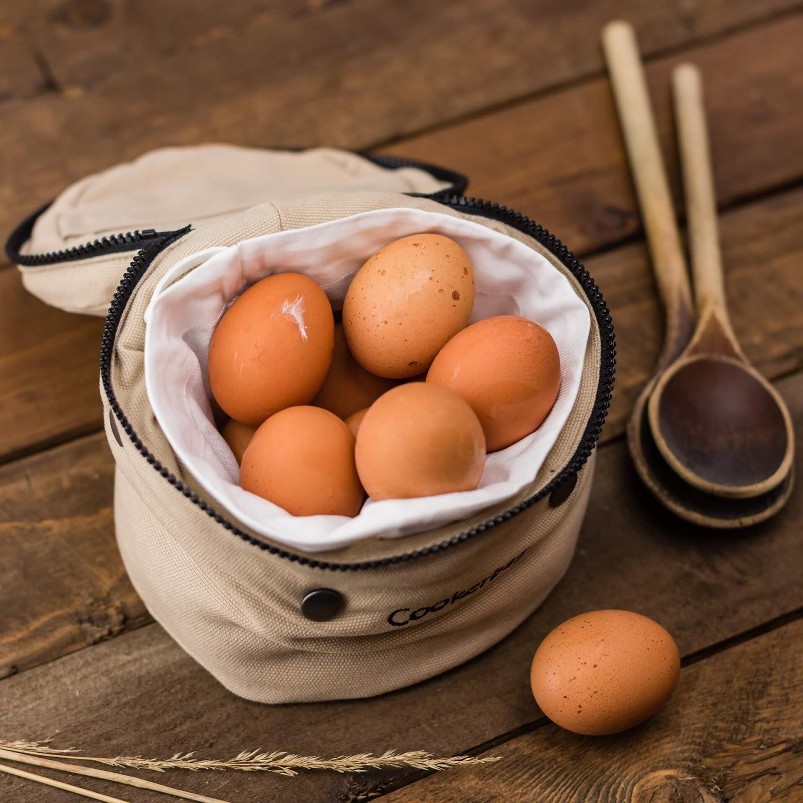 9 Super Alimentos que Deves Comer se Estás Grávida - www.amaesoueu.com - #alimentação #gravidez #grávidas