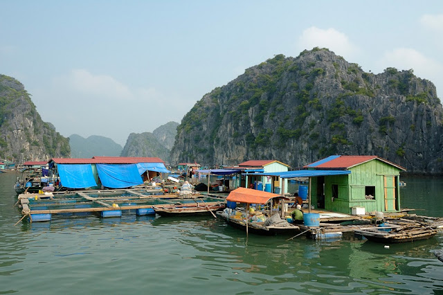 Top 4 floating fishing villages must visit in Halong Bay