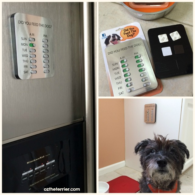 Did You Feed the Dog mounts anywhere you need to keep track of pet's meals