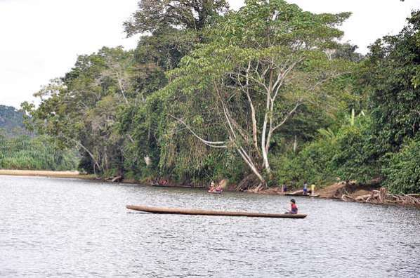 Desde 2010 los indígenas del Tipnis van rechazando la intervención estatal dentro de su territorio