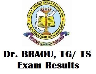 BRAOU Results November 2017