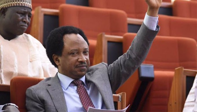 Read And See The Sponsor Behind The Fulani Herdsmen Senator Sani reveals