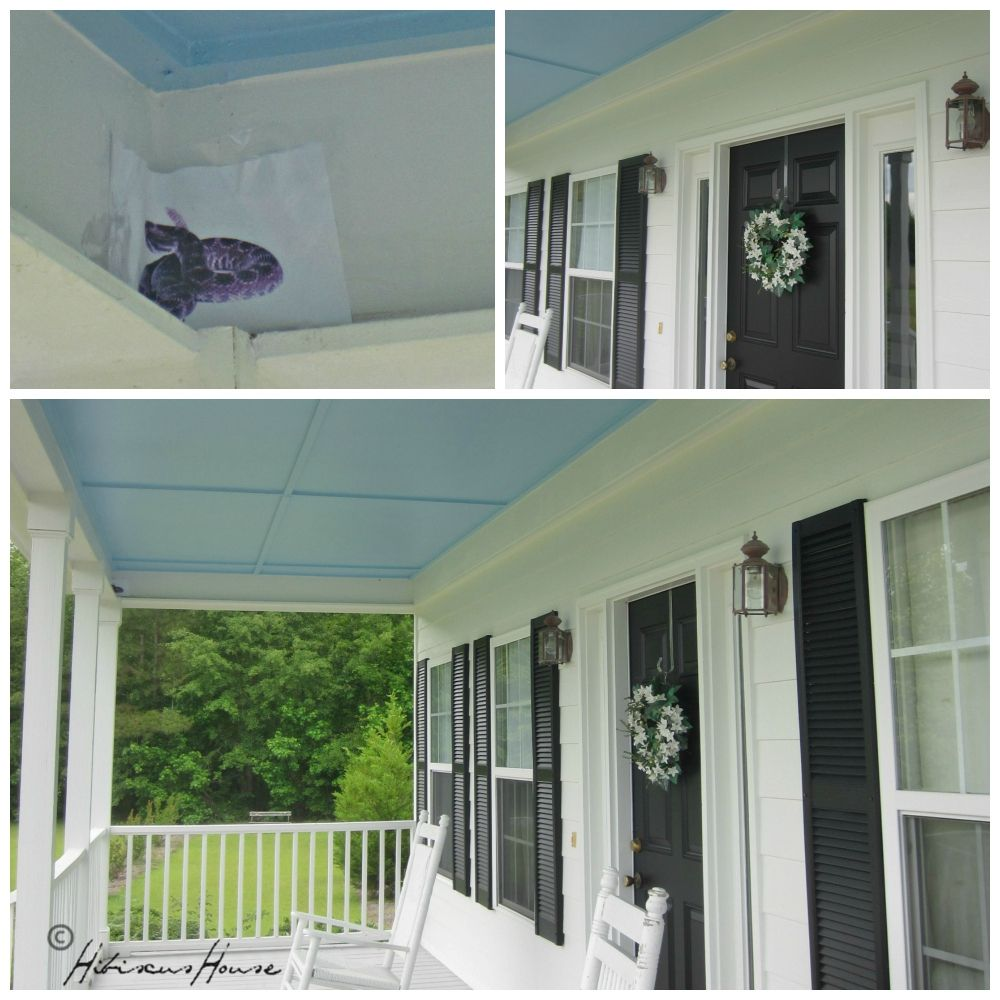 would a blue ceiling really deter wasps from building nests on the porch I'd always heard stories that blue porch ceilings prevent dirt daubers or wasps from building nests, and keep mosquitos out because the blue color tricks them by appearing to be the sky.