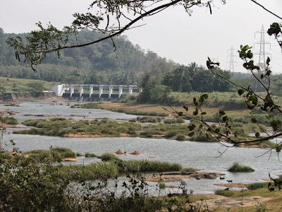 Neolithic sites found in India's Gayathripuzha river valley
