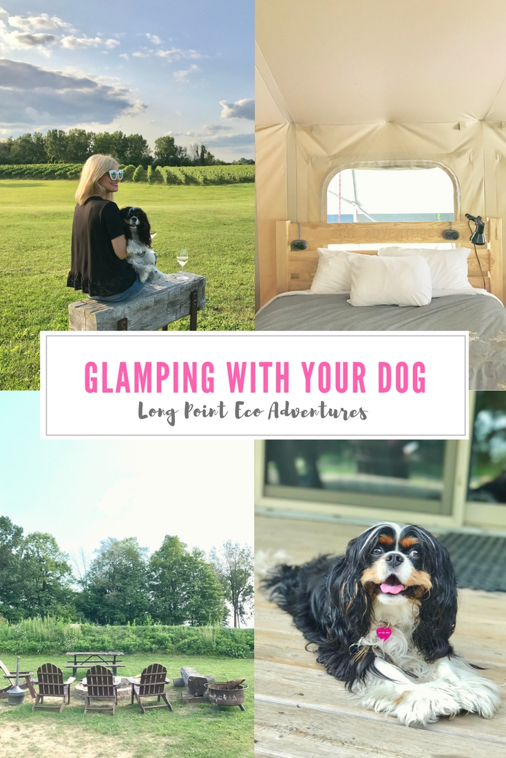 Bijuleni   Glamping With Your Pet at Long Point Eco Adventures