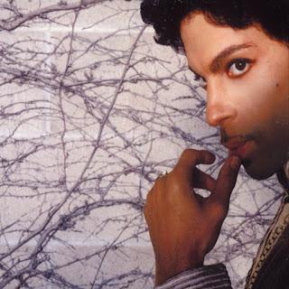 Prince, Musicology