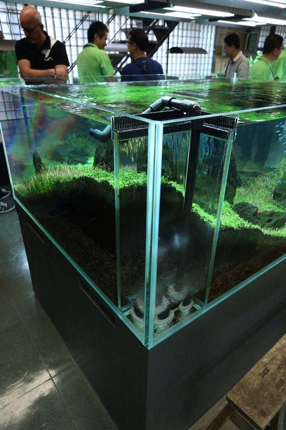 Lọc tràn dưới trong một hồ thủy sinh chuyên nghiệp của ADA
