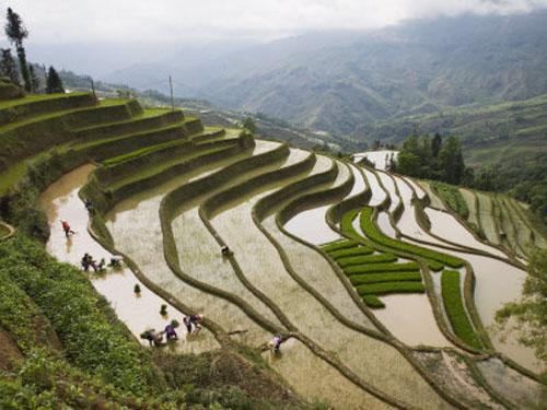 Lugares Extraordinarios Terrazas Yuanyuang