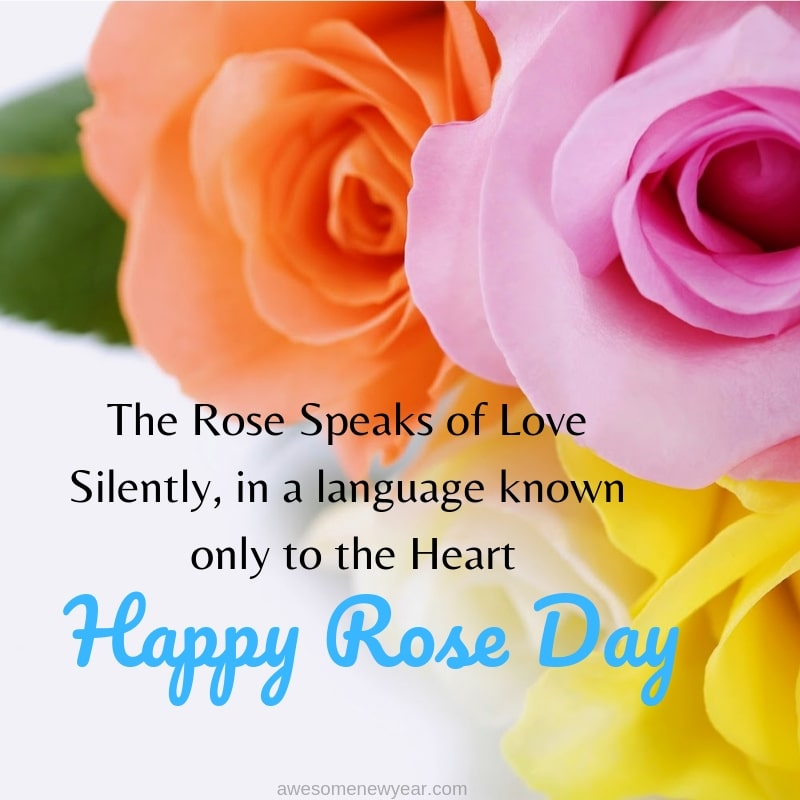 Lovely Rose Day Quotes With Images Happy Rose Day