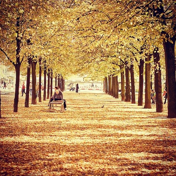 Jesień w Berlinie [2013]
