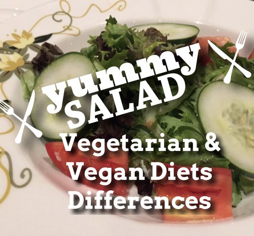 difference vegetarian vegan diets nutrition healthy food dairy free meat free IBS
