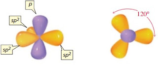 hibridisasi orbital gambar sp2