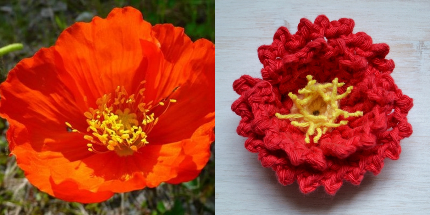 Free crochet flower pattern a day challenge crochet arcade crochet poppy flower pattern bankloansurffo Image collections