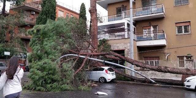 I danni del maltempo su Roma