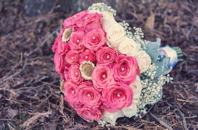 Asal mula mawar pink ada sejak imperial Cina sekitar 5000 tahun yang lalu