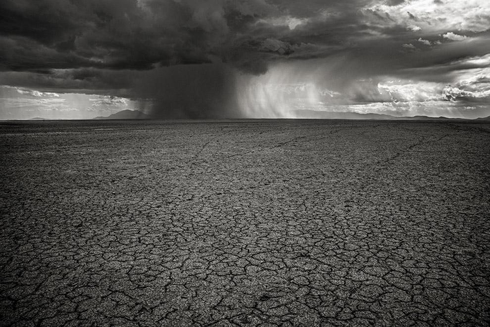 Лучший фотограф природы National Geographic 2017